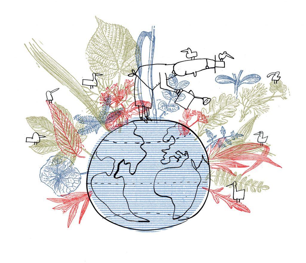 HEC-transition-ecologique
